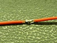 Name: P1010813.jpg