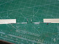 Name: Aileron Horns.JPG
