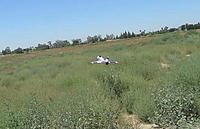 Name: 20120629_0264 3.jpg