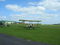 Name: MW May 20090294.jpg