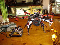 Name: IMGP1967_resize.jpg