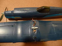 Name: P1010617.jpg