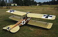 Name: IMG_3383ed.jpg