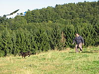 Name: 20090906Sljeme137.jpg