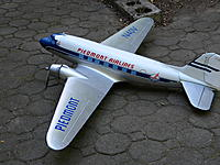 Name: pied3c 012.jpg