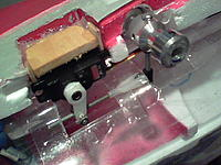 Name: 101_1241.jpg