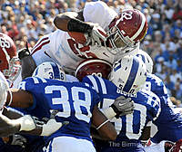 Name: bamaduke.jpg