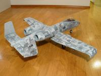 Name: A-10-digicamo0004.jpg