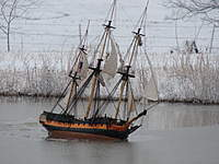 Name: Surprise in ice 28 January 09.jpg