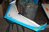 Name: Danwing Anabat 001.jpg