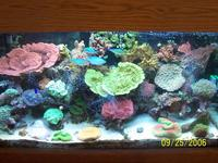 Name: thumb------06nov_ 131.jpg