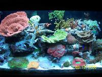 Name: thumb-000_0044.jpg