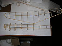 Name: P1010001.jpg
