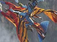 Name: Wing Colors for Dragon15.jpg