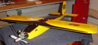 Name: Yellow Jacket.jpg