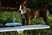 Name: Oct.12 10 001web.jpg