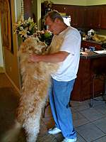 Name: DuffyDance.jpg
