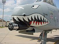 Name: A-10-MVC-006F.jpg