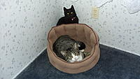 Name: 1-04-16 006.jpg