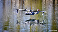 Name: PBY_Water-13.jpg