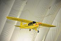 Name: tdf-021.jpg