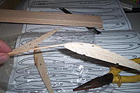 Name: 100_7000.jpg
