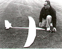 Name: birdofprey.jpg