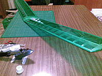 Name: covered-balsa-wing.jpg