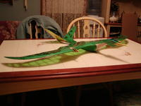 Name: Pteradactyl 013.jpg