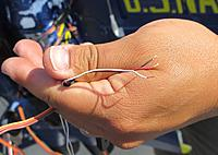 Name: IMG_0982.jpg