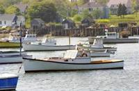 Name: MLB_48.jpg