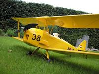 Name: TreeDiver_TigerMoth01.jpg