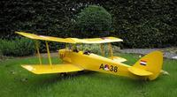 Name: TreeDiver_TigerMoth02.jpg