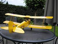 Name: TreeDiver_TigerMoth04.jpg