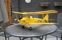 Name: TreeDiver_TigerMoth05.jpg
