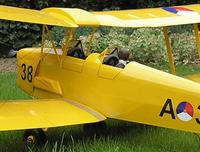 Name: TreeDiver_TigerMoth06.jpg
