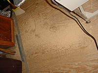 Name: Wood chips.jpg