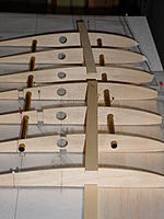 Name: DSC00090.jpg