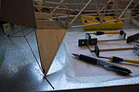 Name: P1070421.jpg