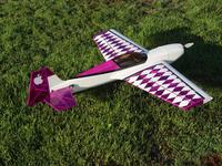 Name: DSC04540r.jpg