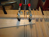 Name: DSC03650.jpg