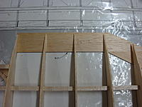 Name: DSC04029.jpg