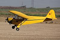 Name: FlyingCub.jpg