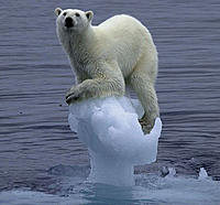 Name: polarbearclingingtoiceberg.jpg