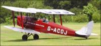 Name: tigermoth_gacdj_3.jpg