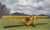 Name: dave page's CUB ON GROUND MORE YEL 2.jpg