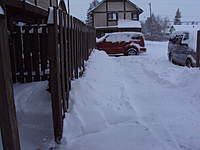 Name: DSC00479.jpg