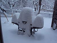 Name: DSC00482.jpg