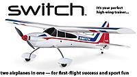 Name: flyzone switch.jpg