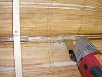 Name: pri20120323e.jpg